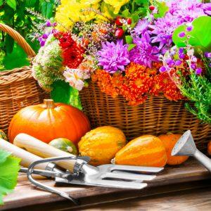 Herbst  -  Dekoration mit Blumen